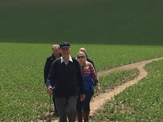 walkers crossing a field